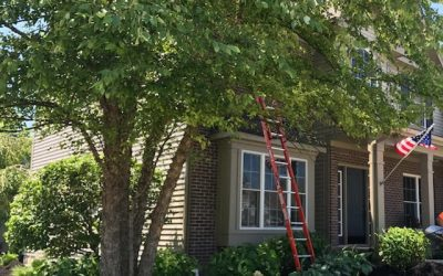 Ladder Safety & Workers Comp